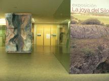 museoevolucion1 215x161 - Exposiciones