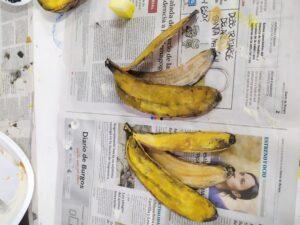 IMG 20210127 112428 300x225 - Asi ha quedado la piel de plátano en latex